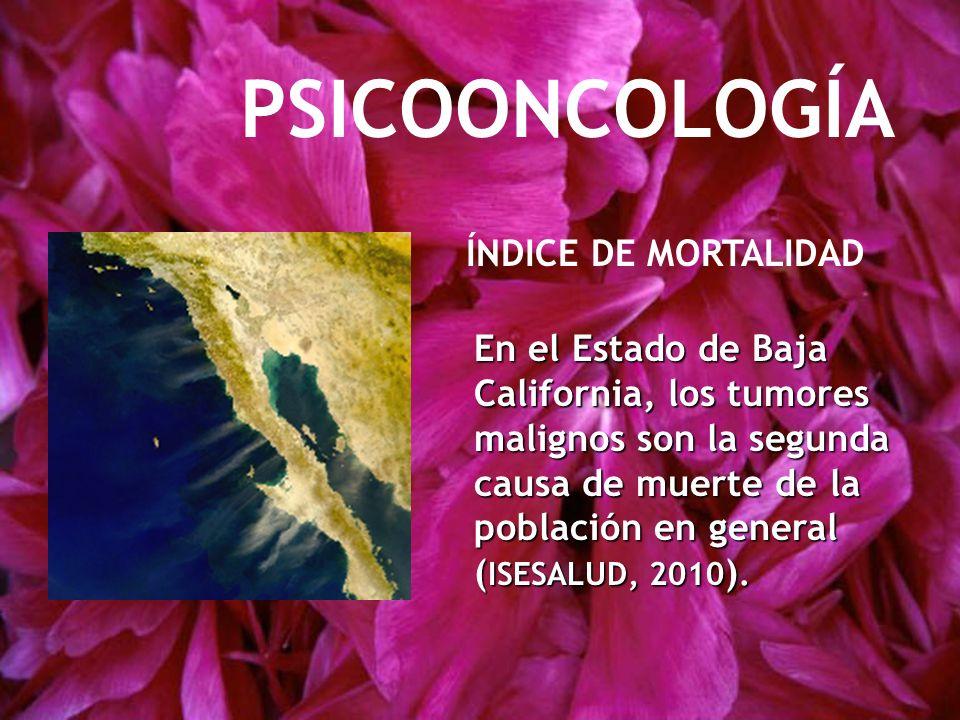 PSICOONCOLOGÍA En el Estado de Baja California, los tumores malignos son la segunda causa de muerte de la población en general ( ISESALUD, 2010 ). ÍND