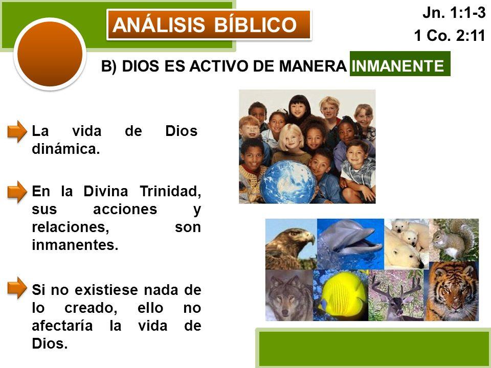 ANÁLISIS BÍBLICO B) DIOS ES ACTIVO DE MANERA INMANENTE La vida de Dios dinámica. En la Divina Trinidad, sus acciones y relaciones, son inmanentes. Si