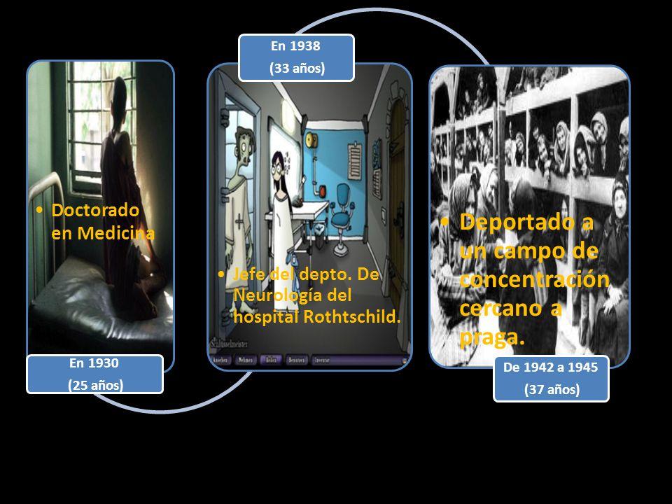 Doctorado en Medicina En 1930 (25 años) Jefe del depto. De Neurología del hospital Rothtschild. En 1938 (33 años) Deportado a un campo de concentració