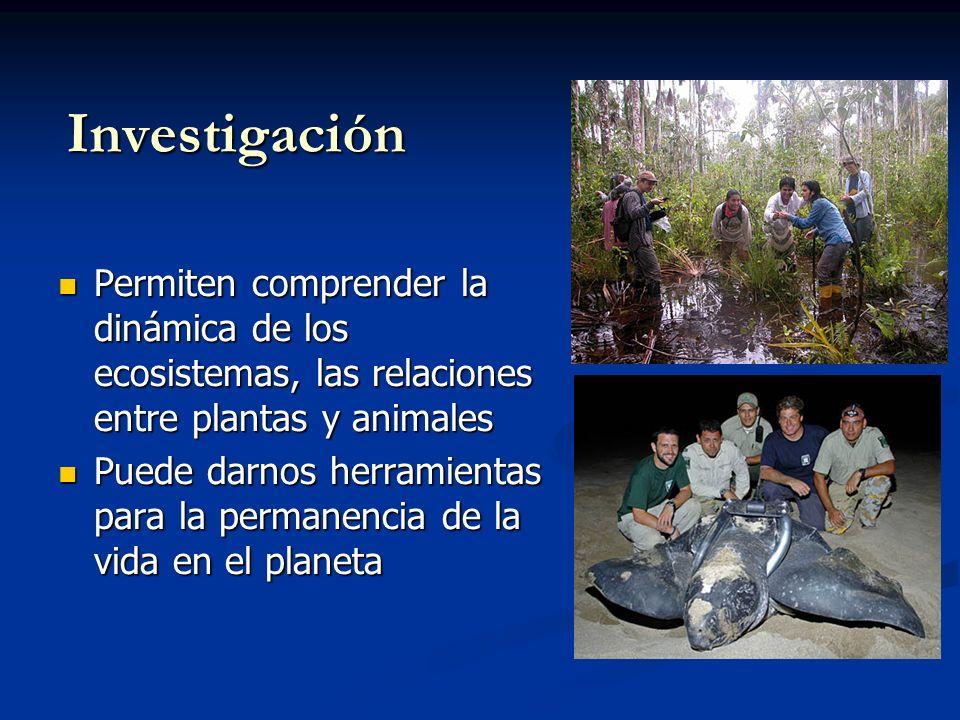 Educación Programas de Educación Ambiental orientados al conocimiento de la importancia de la Vida Silvestre Programas de Educación Ambiental orientados al conocimiento de la importancia de la Vida Silvestre
