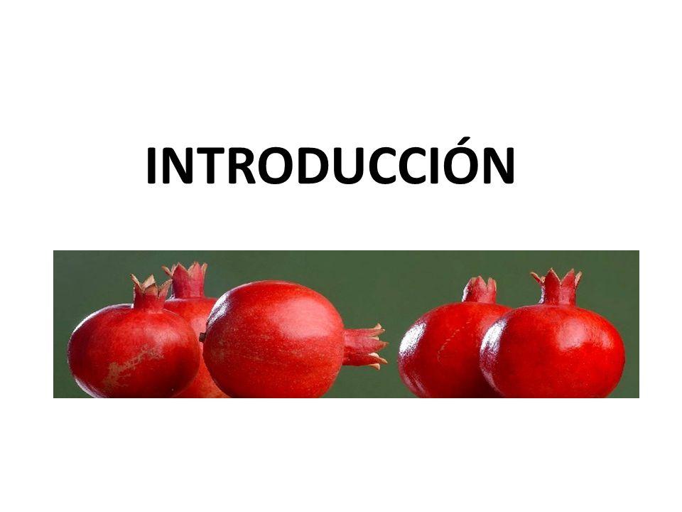 La granada (Punica granatum, Punicaceae) es una fruta que se cultiva en zonas subtropicales y tropicales La parte comestible de la fruta es llamada arilos y constituye el 52% del total de la fruta (p/p), el 78% corresponde a jugo, y el 22% a la semilla Contiene una cantidad considerable de: Sólidos solubles totales, azúcares, antocianinas, polifenoles y ac.