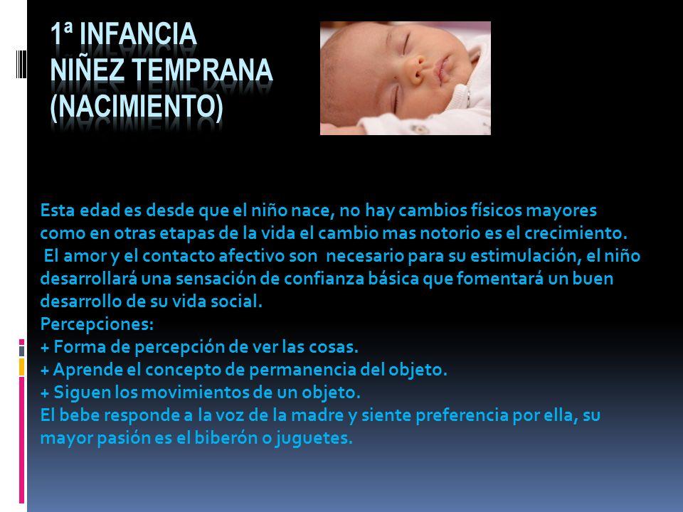 2ª infancia Lactancia e infancia (nacimiento a 3 años) Operan en diversas medidas todos los sentidos y sistemas del cuerpo.