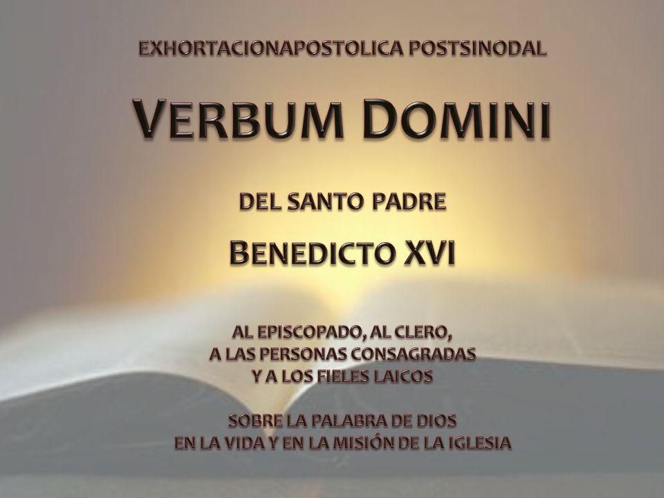 Por primera vez, además, el Sínodo de los Obispos quiso invitar también a un Rabino para que nos diera un valioso testimonio sobre las Sagradas Escrituras judías, que también son justamente parte de nuestras Sagradas Escrituras.