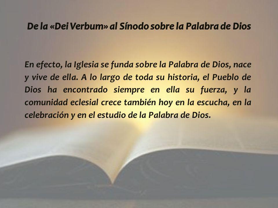 En efecto, la Iglesia se funda sobre la Palabra de Dios, nace y vive de ella.