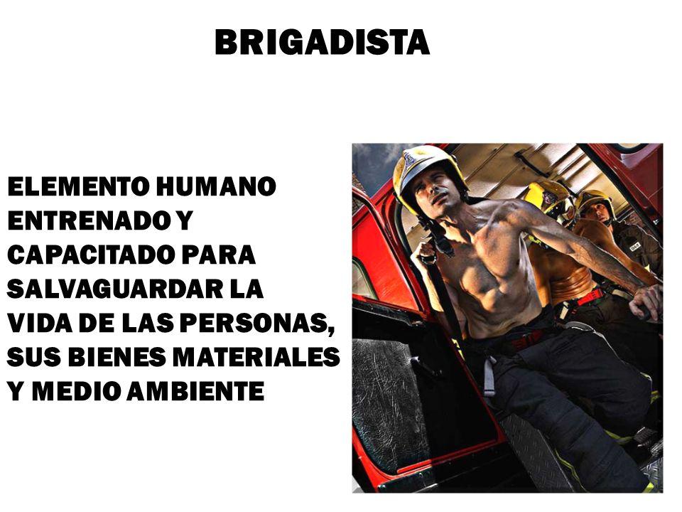 BRIGADISTA ELEMENTO HUMANO ENTRENADO Y CAPACITADO PARA SALVAGUARDAR LA VIDA DE LAS PERSONAS, SUS BIENES MATERIALES Y MEDIO AMBIENTE