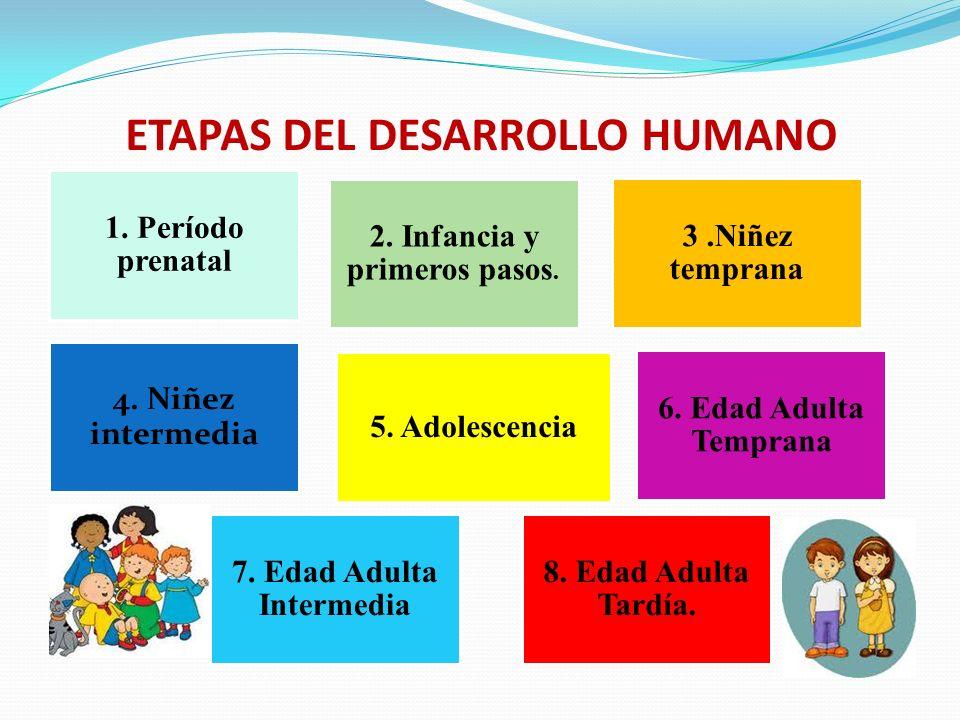 UNIVERSIDAD AUTÓNOMA DE CHIRIQUÍ FACULTAD DE EDUCACIÓN PSICOLOGÍA DESARROLLO HUMANO PRESENTADO POR: MIGENIA CARRERA PITTÍ DIRIGIDO POR: VIELKA MARIBEL BATISTA.