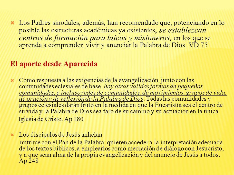 Los Padres sinodales, además, han recomendado que, potenciando en lo posible las estructuras académicas ya existentes, se establezcan centros de formación para laicos y misioneros, en los que se aprenda a comprender, vivir y anunciar la Palabra de Dios.