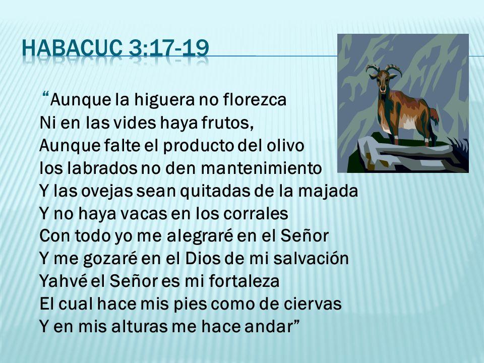 Reconocer que Dios está promoviendo la destrucción de la estructura enferma (Ezequiel 13:10-14), y aceptarlo sin poner resistencia.