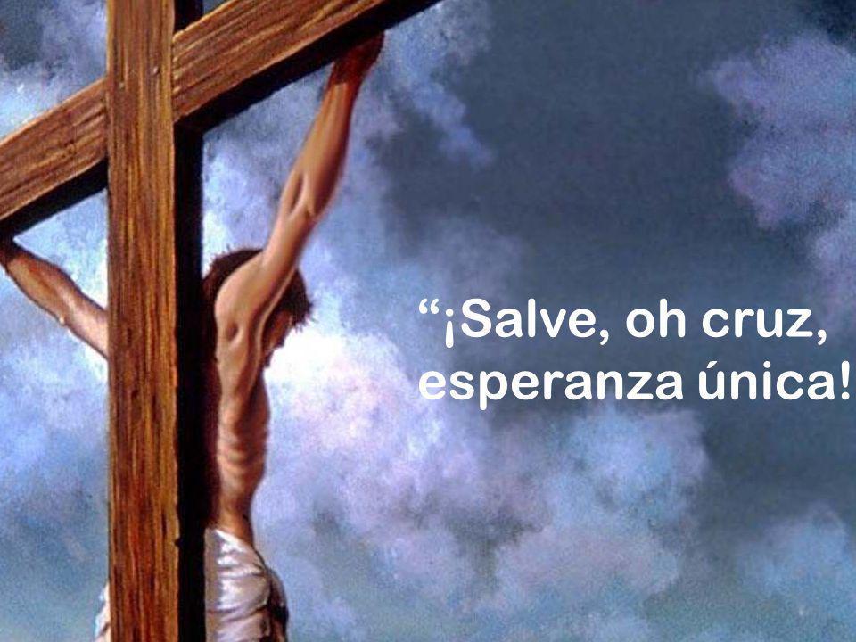 ¡Salve, oh cruz, esperanza única!.