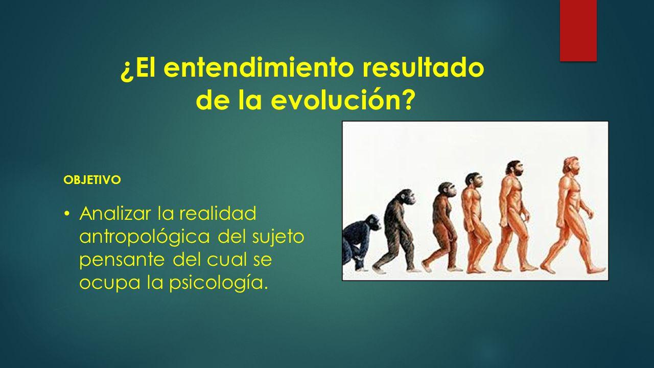 ¿El entendimiento resultado de la evolución.