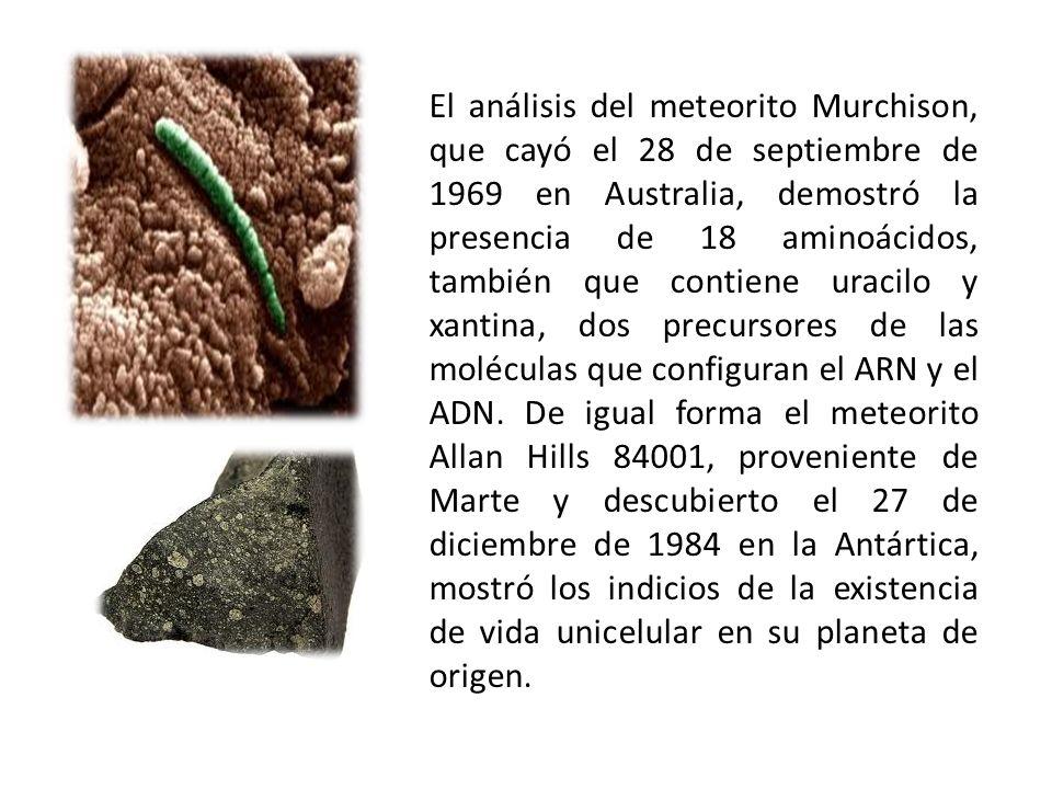 El análisis del meteorito Murchison, que cayó el 28 de septiembre de 1969 en Australia, demostró la presencia de 18 aminoácidos, también que contiene