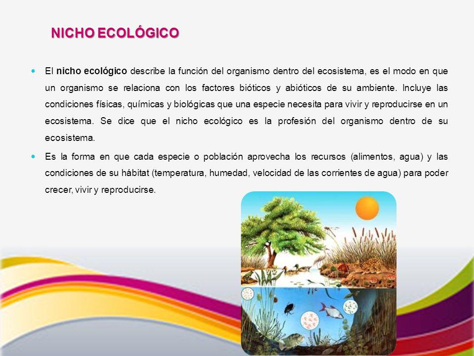 El nicho ecológico describe la función del organismo dentro del ecosistema, es el modo en que un organismo se relaciona con los factores bióticos y abióticos de su ambiente.