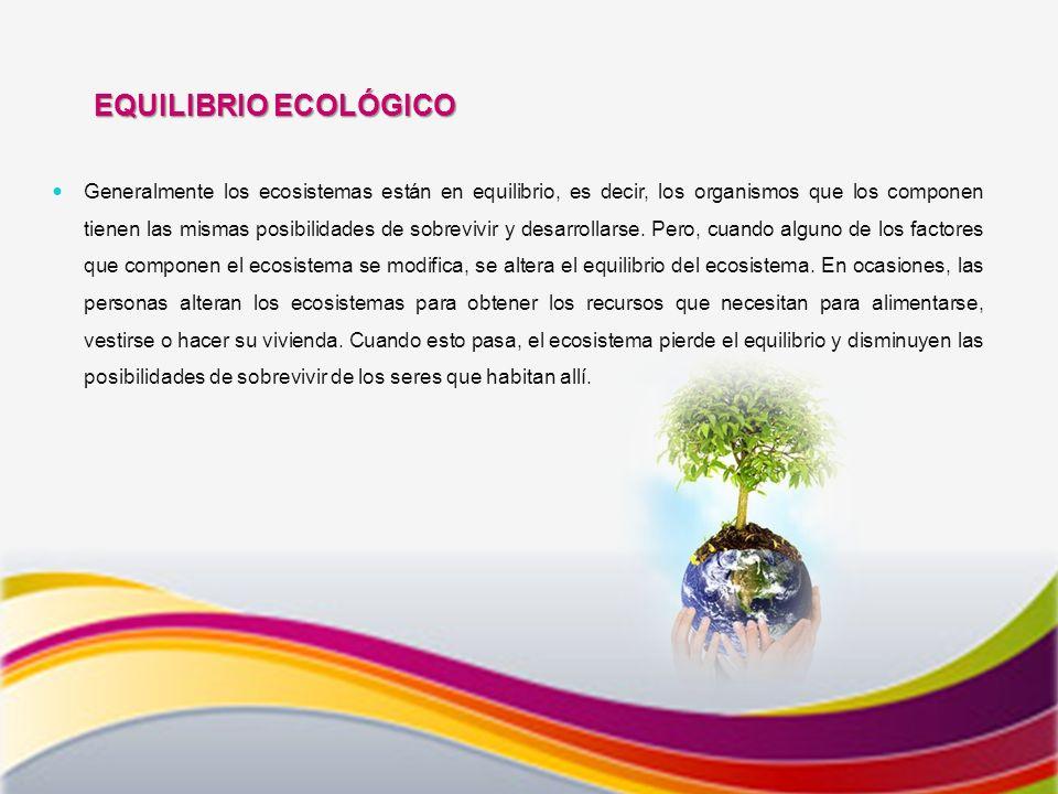 EQUILIBRIO ECOLÓGICO Generalmente los ecosistemas están en equilibrio, es decir, los organismos que los componen tienen las mismas posibilidades de sobrevivir y desarrollarse.