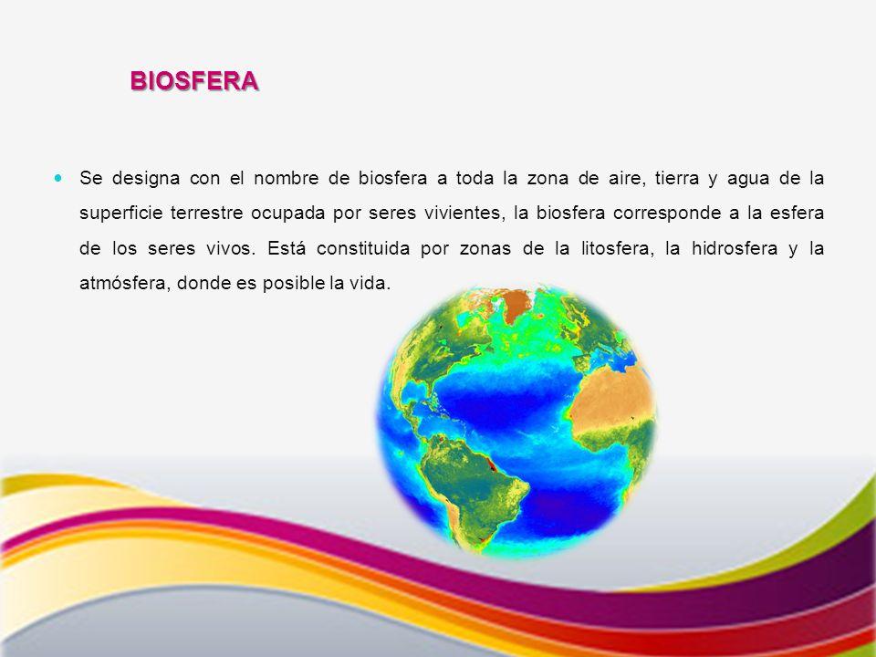 BIOSFERA Se designa con el nombre de biosfera a toda la zona de aire, tierra y agua de la superficie terrestre ocupada por seres vivientes, la biosfera corresponde a la esfera de los seres vivos.