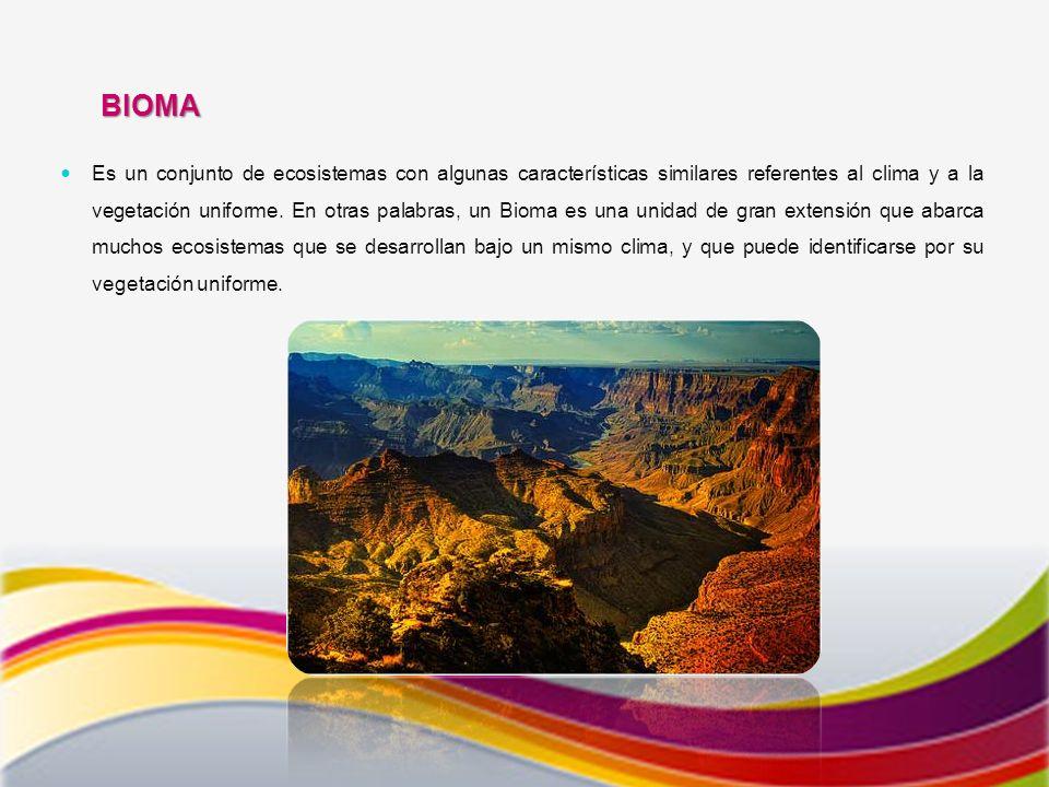 BIOMA Es un conjunto de ecosistemas con algunas características similares referentes al clima y a la vegetación uniforme.
