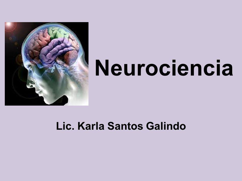 Neurociencia Lic. Karla Santos Galindo