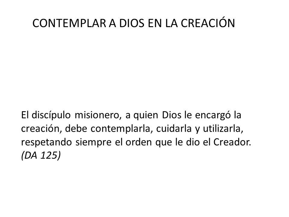 CONTEMPLAR A DIOS EN LA CREACIÓN El discípulo misionero, a quien Dios le encargó la creación, debe contemplarla, cuidarla y utilizarla, respetando sie