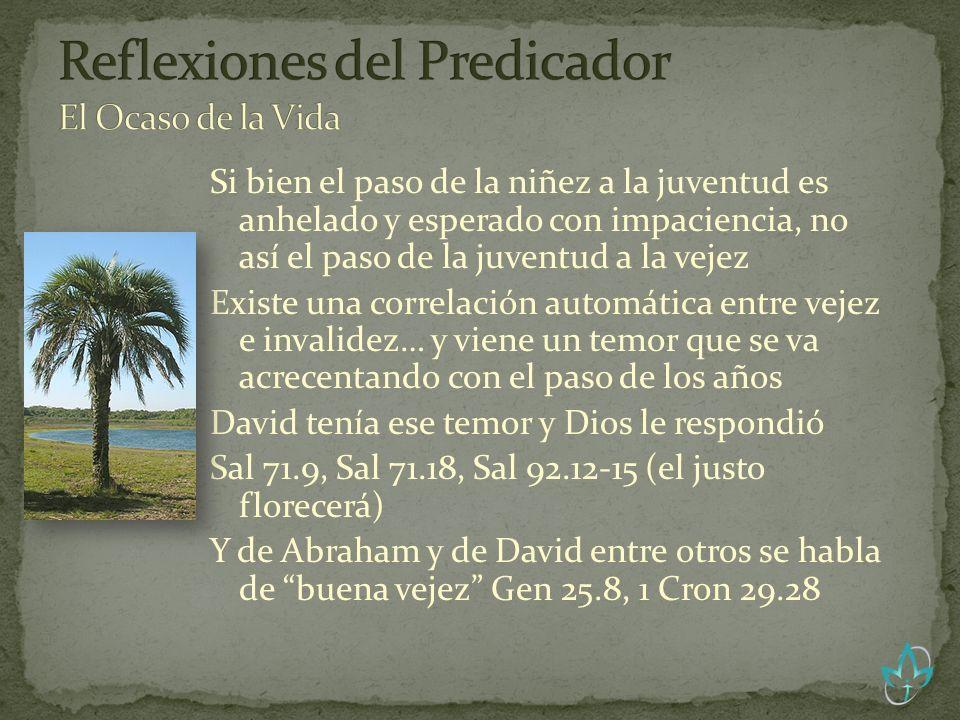 Juan 10.10 El ladrón sólo viene para robar y matar y destruir; yo he venido para que tengan vida, y para que la tengan en abundancia.