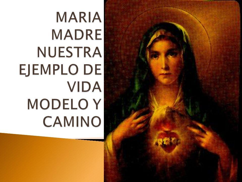 María se presenta bajo una nueva luz, como una Madre educadora que nos precede en el camino de la fe, indicándonos cual es el camino de la vida.