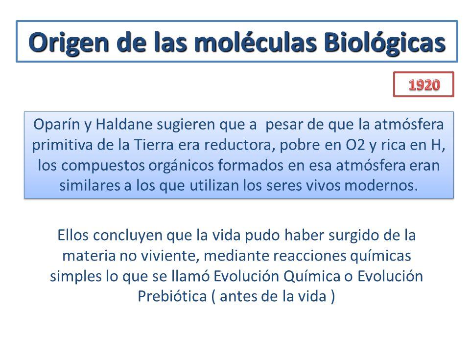 Origen de las moléculas Biológicas Ellos concluyen que la vida pudo haber surgido de la materia no viviente, mediante reacciones químicas simples lo q