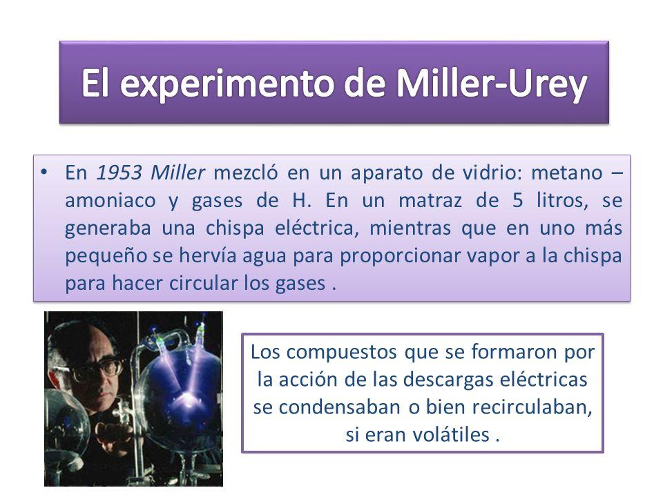 En 1953 Miller mezcló en un aparato de vidrio: metano – amoniaco y gases de H. En un matraz de 5 litros, se generaba una chispa eléctrica, mientras qu