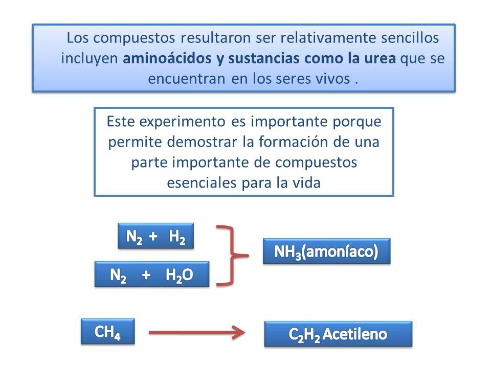 Los compuestos resultaron ser relativamente sencillos incluyen aminoácidos y sustancias como la urea que se encuentran en los seres vivos. Este experi