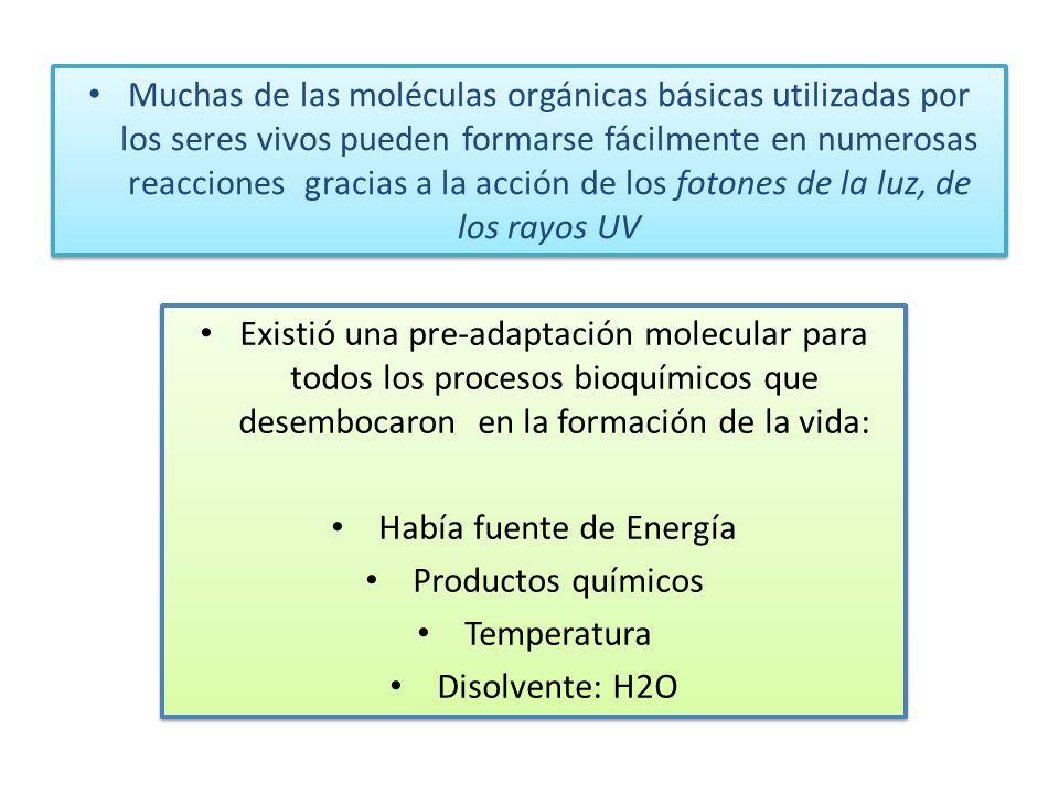 Muchas de las moléculas orgánicas básicas utilizadas por los seres vivos pueden formarse fácilmente en numerosas reacciones gracias a la acción de los fotones de la luz, de los rayos UV Existió una pre-adaptación molecular para todos los procesos bioquímicos que desembocaron en la formación de la vida: Había fuente de Energía Productos químicos Temperatura Disolvente: H2O Existió una pre-adaptación molecular para todos los procesos bioquímicos que desembocaron en la formación de la vida: Había fuente de Energía Productos químicos Temperatura Disolvente: H2O