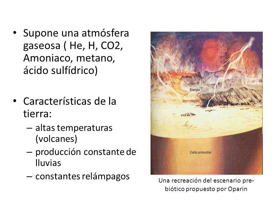 Supone una atmósfera gaseosa ( He, H, CO2, Amoniaco, metano, ácido sulfídrico) Características de la tierra: – altas temperaturas (volcanes) – producción constante de lluvias – constantes relámpagos Una recreación del escenario pre- biótico propuesto por Oparin