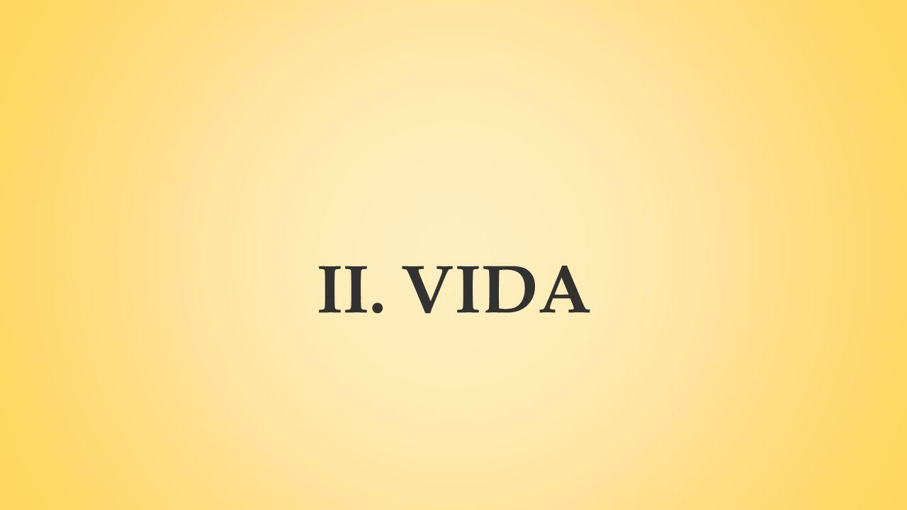 II.VIDA