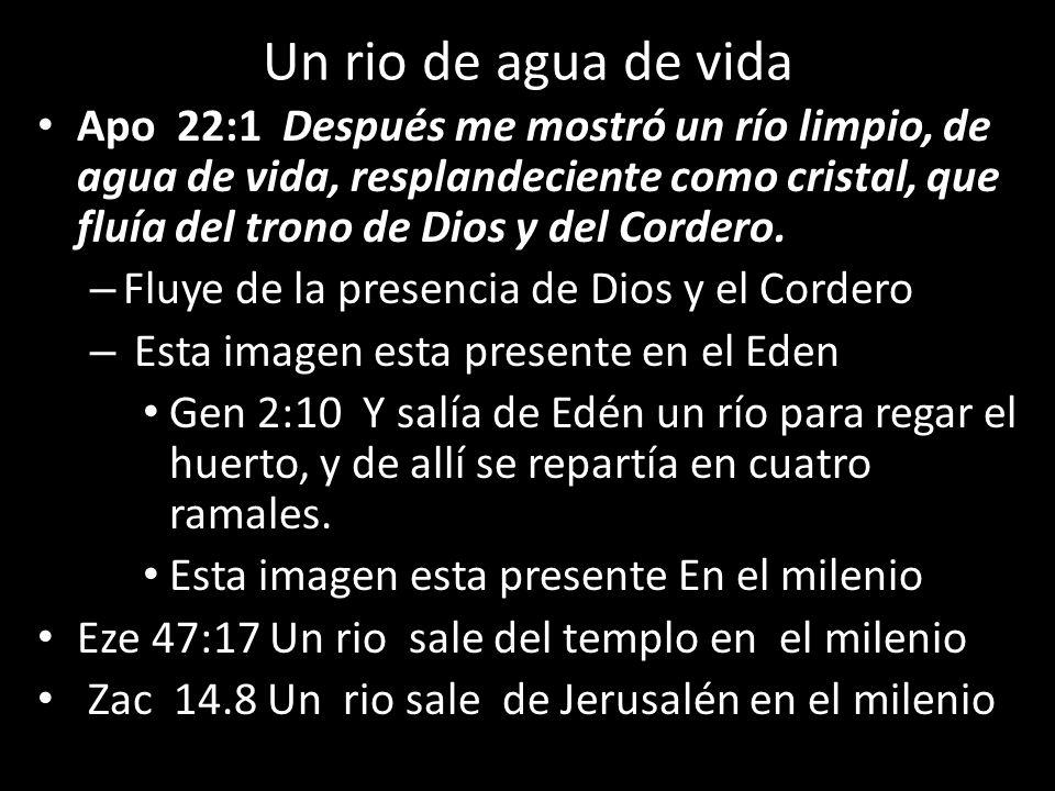 Un rio de agua de vida Apo 22:1 Después me mostró un río limpio, de agua de vida, resplandeciente como cristal, que fluía del trono de Dios y del Cord