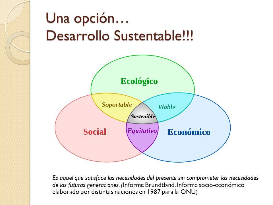 Una opción… Desarrollo Sustentable!!.