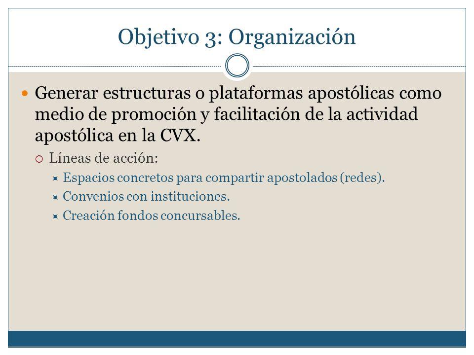 Objetivo 3: Organización Generar estructuras o plataformas apostólicas como medio de promoción y facilitación de la actividad apostólica en la CVX. Lí