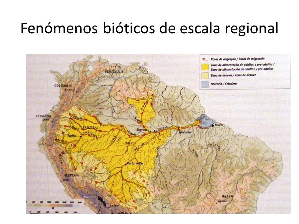 Fenómenos bióticos de escala regional