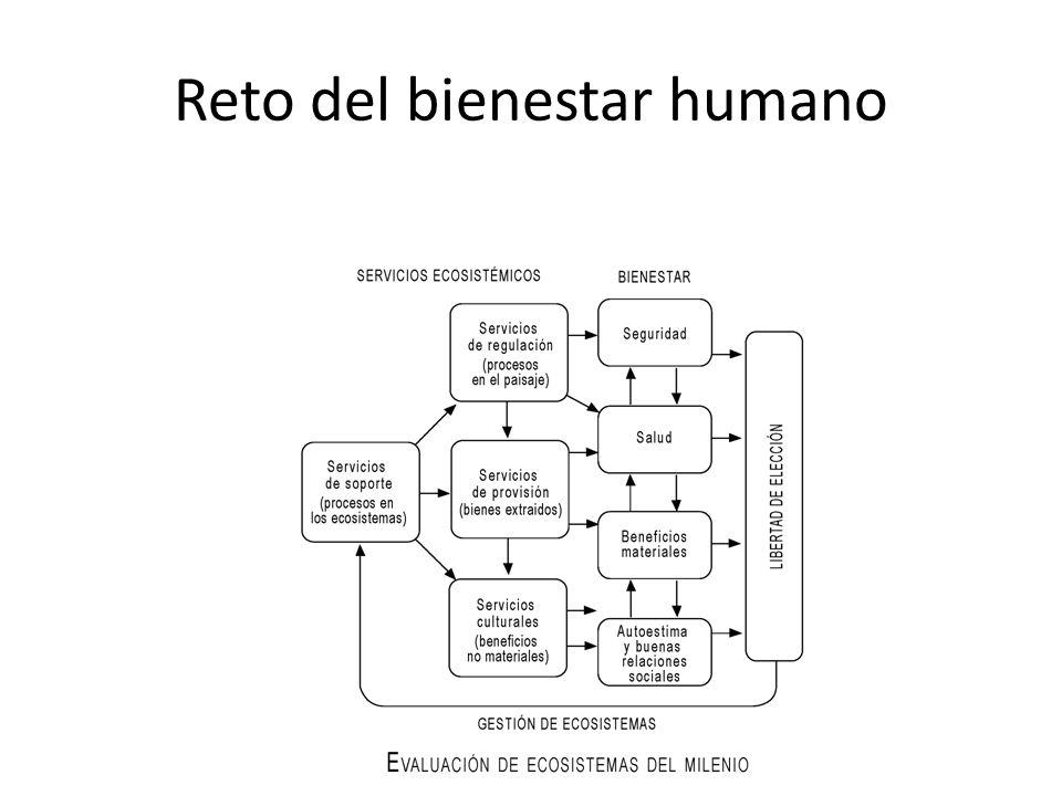 Reto del bienestar humano
