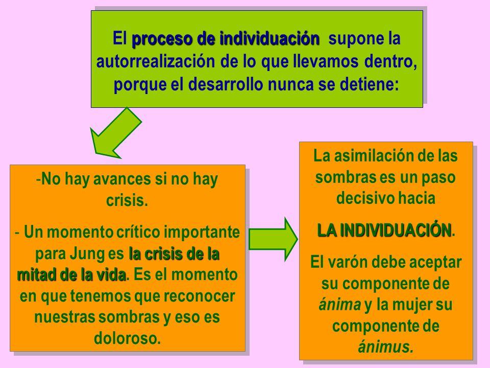 proceso de individuación El proceso de individuación supone la autorrealización de lo que llevamos dentro, porque el desarrollo nunca se detiene: La asimilación de las sombras es un paso decisivo hacia LA INDIVIDUACIÓN LA INDIVIDUACIÓN.