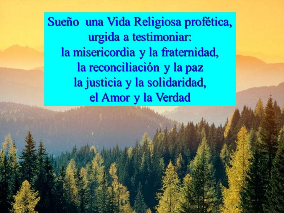 Sueño una Vida Religiosa profética, urgida a testimoniar: la misericordia y la fraternidad, la reconciliación y la paz la justicia y la solidaridad, el Amor y la Verdad