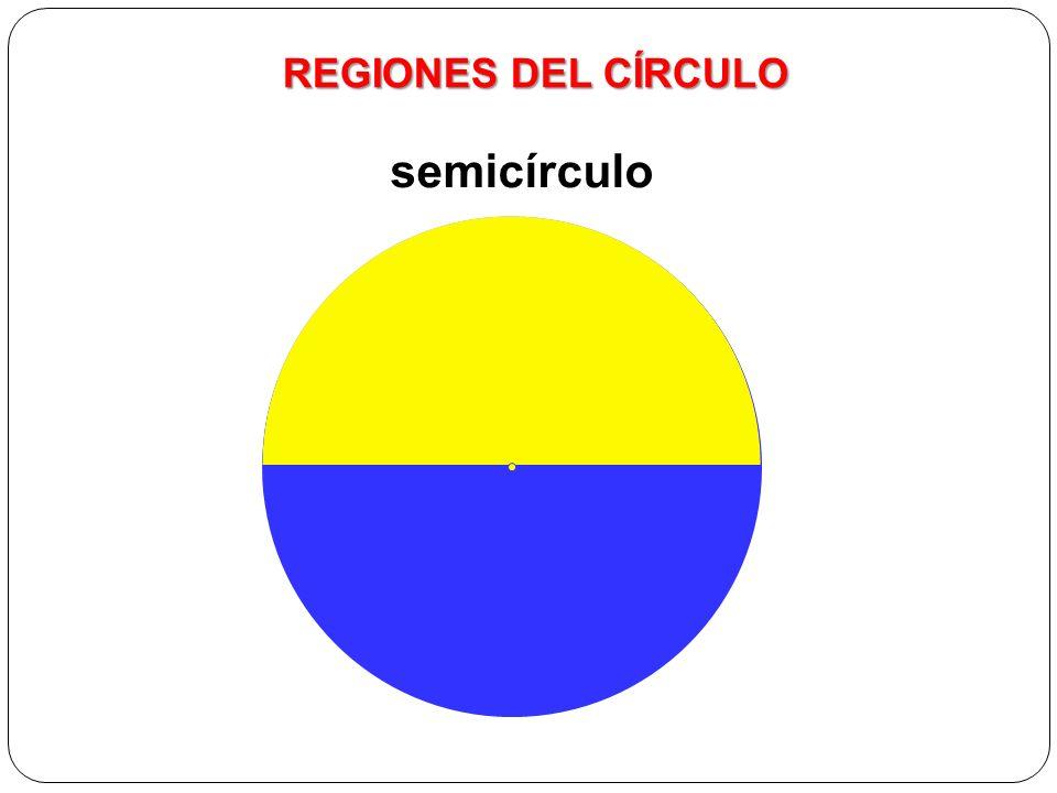 Elementos del círculo semicírculo REGIONES DEL CÍRCULO