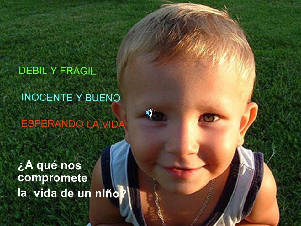 DEBIL Y FRAGIL INOCENTE Y BUENO ESPERANDO LA VIDA ¿A qué nos compromete la vida de un niño?