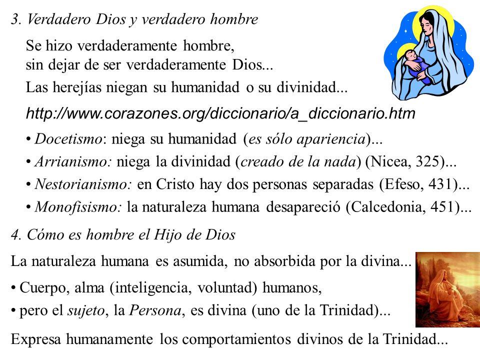 3. Verdadero Dios y verdadero hombre Se hizo verdaderamente hombre, sin dejar de ser verdaderamente Dios... Las herejías niegan su humanidad o su divi