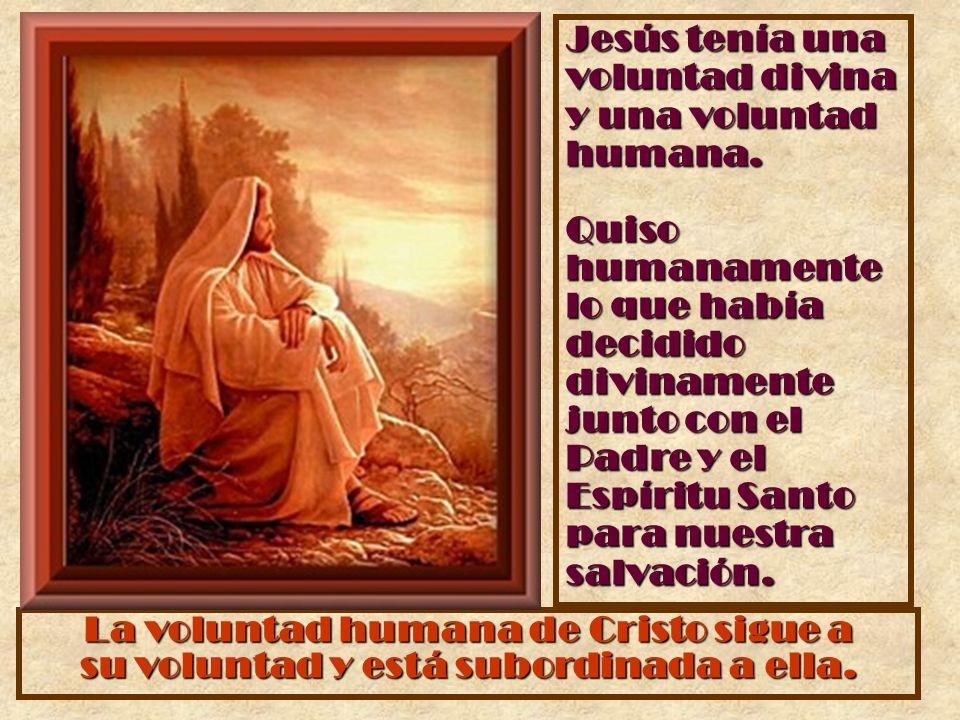 Jesús tenía una voluntad divina y una voluntad humana. Quiso humanamente lo que había decidido divinamente junto con el Padre y el Espíritu Santo para