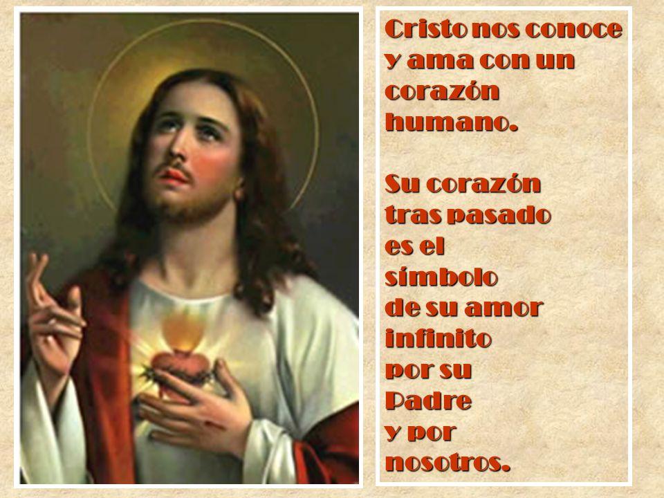 Cristo nos conoce y ama con un corazón humano. Su corazón tras pasado es el símbolo de su amor infinito por su Padre y por nosotros.