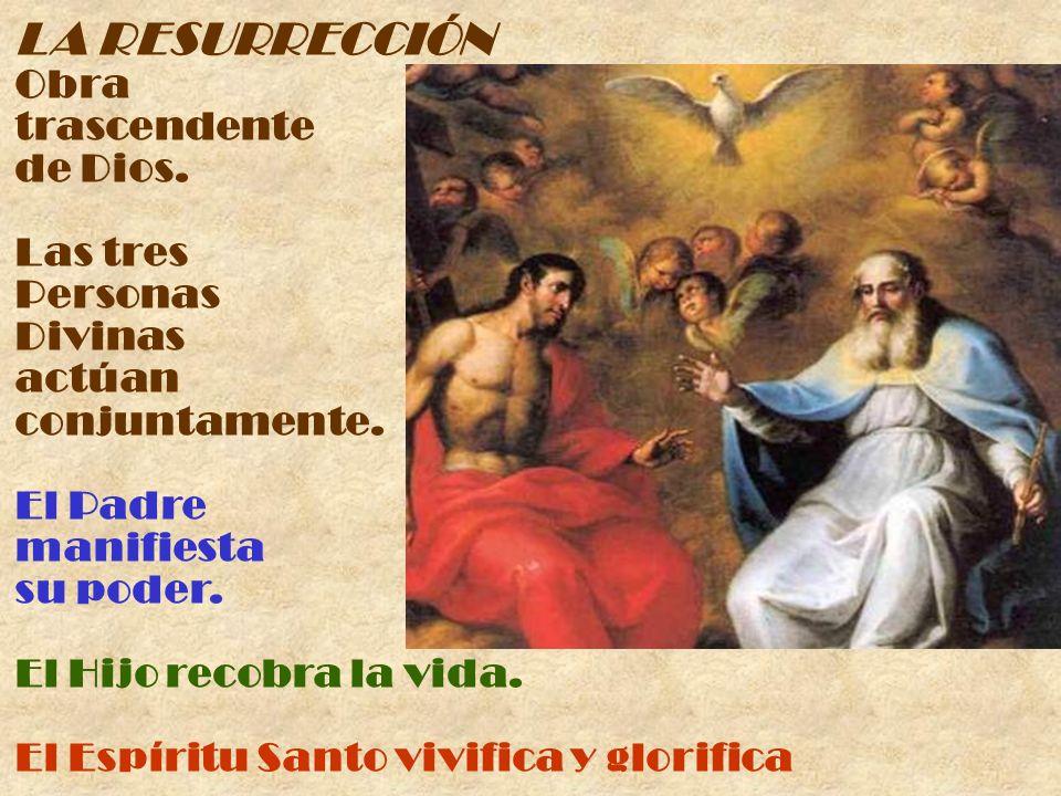 LA RESURRECCIÓN Obra trascendente de Dios. Las tres Personas Divinas actúan conjuntamente. El Padre manifiesta su poder. El Hijo recobra la vida. El E