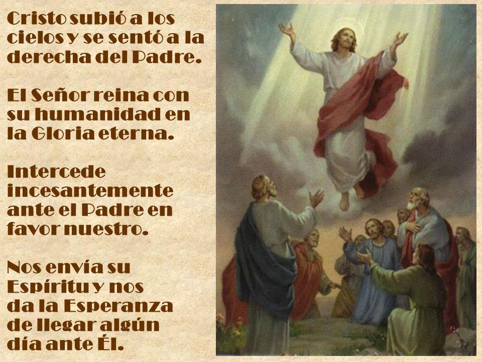Cristo subió a los cielos y se sentó a la derecha del Padre. El Señor reina con su humanidad en la Gloria eterna. Intercede incesantemente ante el Pad