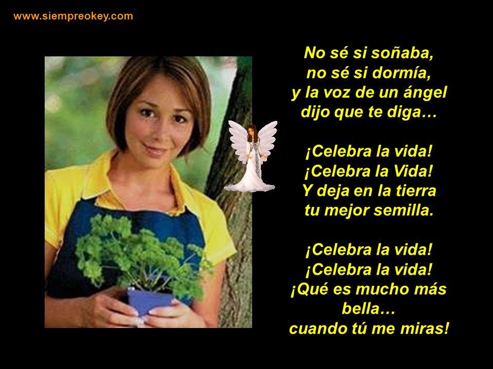 ¡CELEBRA LA VIDA!... ¡Siéntete libre!... ¡Alimenta tu energía! www.siempreokey.com