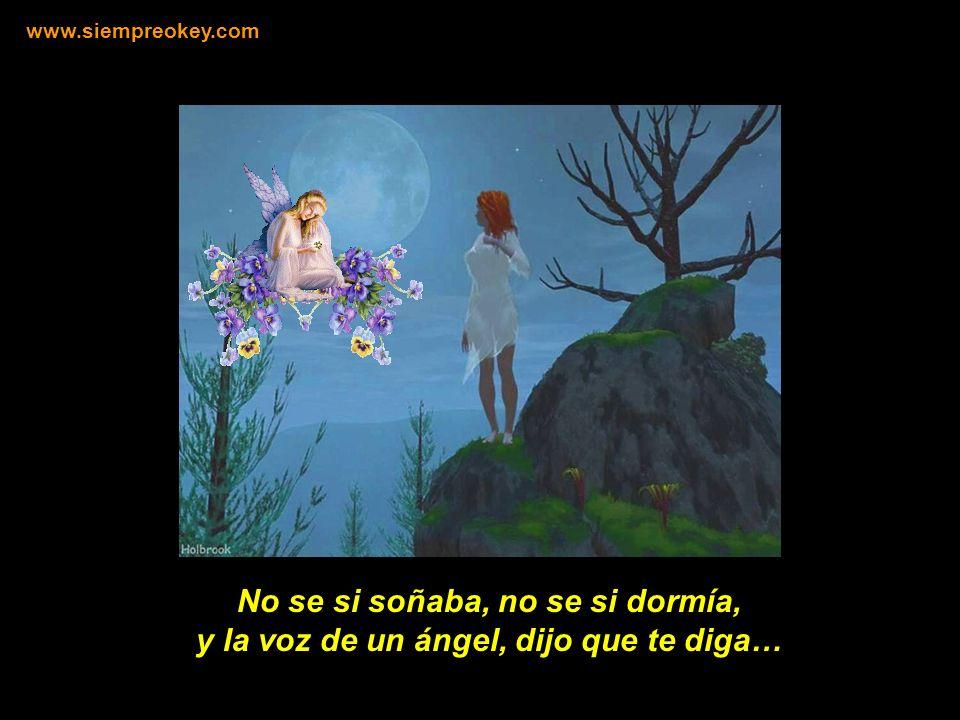 No se si soñaba, no se si dormía, y la voz de un ángel, dijo que te diga… www.siempreokey.com