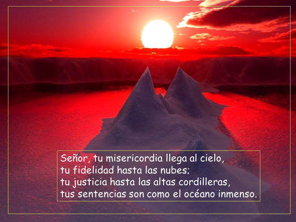 Señor, tu misericordia llega al cielo, tu fidelidad hasta las nubes; tu justicia hasta las altas cordilleras, tus sentencias son como el océano inmenso.