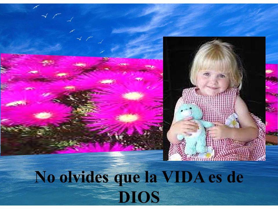 No olvides que la VIDA es de DIOS