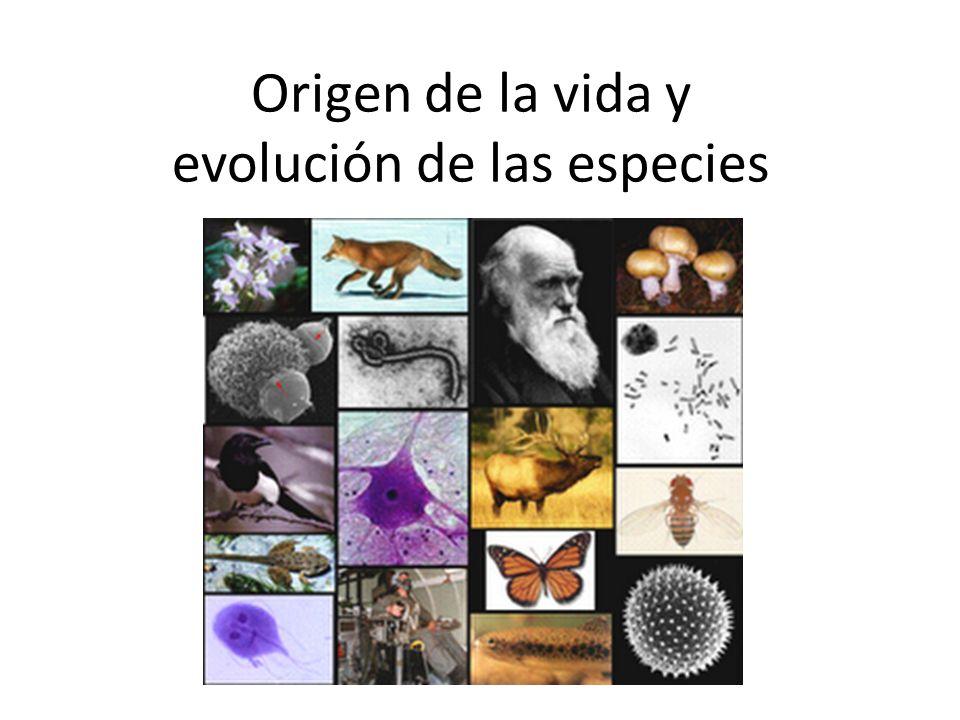 Origen de la vida y evolución de las especies