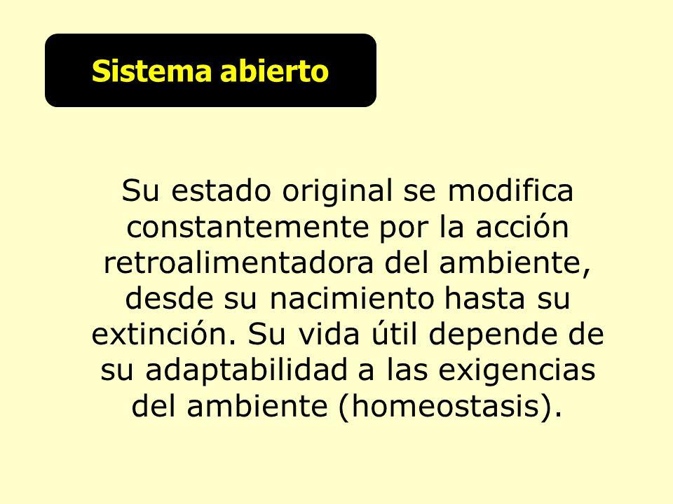 Sistema abierto Su estado original se modifica constantemente por la acción retroalimentadora del ambiente, desde su nacimiento hasta su extinción. Su