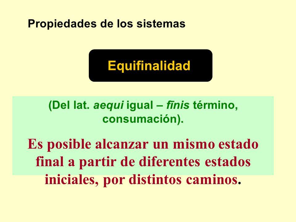 Propiedades de los sistemas Equifinalidad (Del lat. aequi igual – fīnis término, consumación). Es posible alcanzar un mismo estado final a partir de d